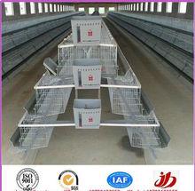 Gaiola de galinha, Gaiolas de galinhas poedeiras, Aves domésticas equipamentos agrícolas
