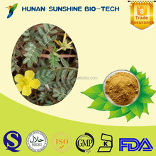 wholesale chinese herbal medicine 100% natural herb Saponins Tribulus Terrestris Extract Powder with eye protection function