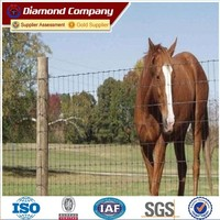 wholesale bulk cattle fence ISO 9001/Galvanized Cattle Feed Fence /hinge joint field fence