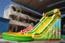 New Style Good Quality Cartoon Water Slide with Pool, Inflatable Slide