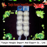 import china garlic good garlic production 1
