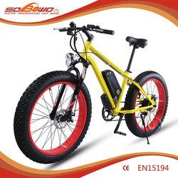 48V/11.6Ah Li-lion battery S19 China electric dirt bike electric for sale