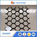 Plástico treliça / HDPE malha / Geonet