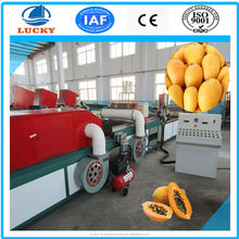 Top manufacturer energy saving mango heat treatment machine