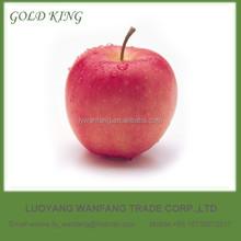 Pome Fruit Product Type Bulk Fresh Fuji Apples