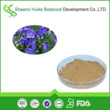 chinese balloon flower/herbal shop/herbal plants