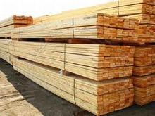 Larch wood sawn timber , lumber KD 10-12 % ,Ash wood logs Diameter 45-50cm +
