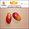 YIWU decoration artificial fruit for kids/ plastice fruit mango/fake fruit