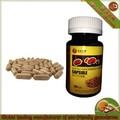 Lingzhi pastillas