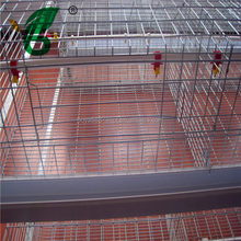 automatic chicken cage for chicken breading machine for sale