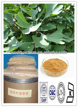 100% Natural ISO Certificate Ginkgo Biloba P.E /Ginkgetin(CAS 90045-36-6) 24%/6% by HPLC