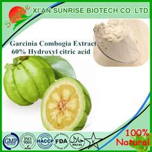 Factory supply garcinia cambogia extract powder manufacturers 60% HCA powder, garcinia cambogia