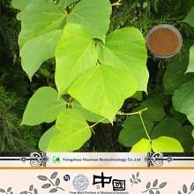 Pueraria Lobata(Kudzu)Root Bio antiage B Natural Cosmetic Ingredient