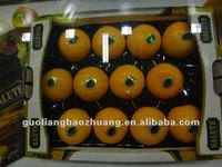China/Cheap/For Fruit/Plastic wholesale serving trays
