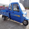 china drift trike with closed cabin