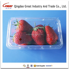 Disposable Plastic Transparent Fruit Storage Clamshell Packaging Container