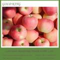 Fresco Red Delicious manzana en venta al por mayor precio con haccp, iso, GLOBAL certificado