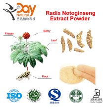 Pseudo-ginseng Extract Notoginsenoside ,Radix Notoginseng Powder, Sanchi Extract Powder 10%-80%