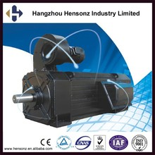 Low Price China high torque Low Rpm bicycle diy DC manufacturers Electric Motor