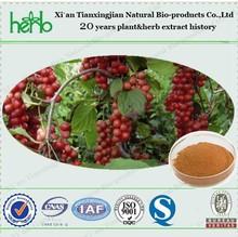 Schizandra Extract Chinese magnolivine fruit extract Schisandrin A Deoxyschizandrin 1%HPLC