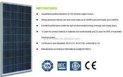 Shine Solar 145W 12V Poly Solar Module