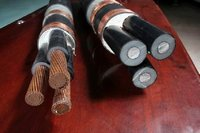 Crosslinked XLPE Insulated PVC Inner Sheath Copper tape Armoured PVC Outer Sheath marine power cable