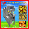 stainless steel full- automatic orange peeling coring slicing machine/86-15838028622