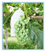 100% PP Non Woven Breathable Grape Protection Bag