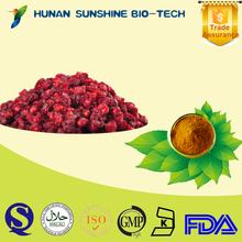 2015 new products Schisandrins Schisandra P.E/ Schisandra Extract powder