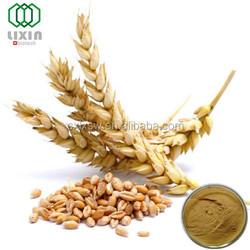 Natural High Organic Barley Malt Extract/ 98%/ HordenineMalt / Extract Powder