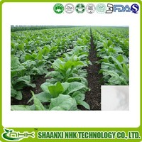 Nicotiana Tabacum Extract, Solanesol Powder
