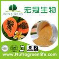 Natural puro polvo de papaya/jugo de papaya en polvo