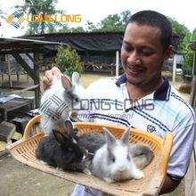 la jaula del conejo para la venta de conejo jaulas de cría de conejo de piel