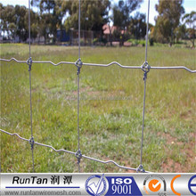 Long life hot dip galvanized fixed knot field fence