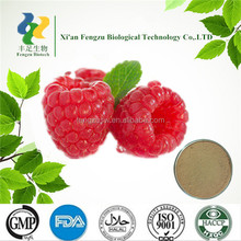 Natural Plant Extract dried raspberry powder