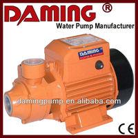 QB Series Electric Single Phase Clean Water Pump (pkm60)