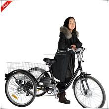250W best price trike bike/electric bike/bicycles
