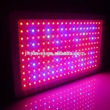 600w Digital Ballast hot sale Mh 600 Watt Grow Light Kit
