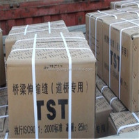 TST elastic bridge expansion joint /Can fill the flexible expansion joint mixed concrete bridge/BJ200