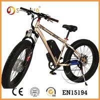 green power long range electric bike store