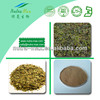 China Manufacturer Gymnema Sylvestre Extract Gymnemic Acids 25%