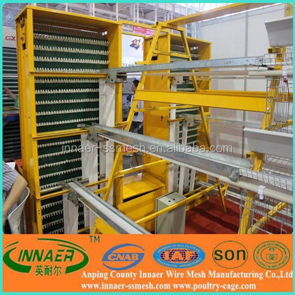 Poultry Farming in Kenya-layers For Kenya Layer Poultry