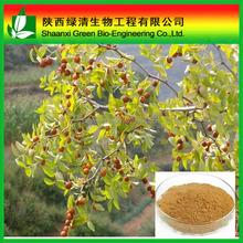 igh Quality Ziziphus Jujube P.e,Ziziphus Jujube P.e/High Quality Wild Jujube Extract/total Saponins 2%/semen Ziziphi Spinosae