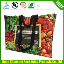 plastic bag for shopping/carrefour shopping bag/extra large shopping bag