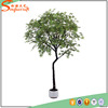 88 inches GuangZhou fake indoor artificial ornamental foliage plants bonsai trees