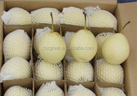 supply 2015 new crop sweet Ya pear with best price