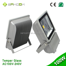 High Power High Lumen outdoor ip65 2 years warranty waterproof cob 100w Led Flood Light