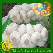 2014 new chinese natural fresh garlic