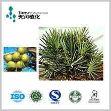 Natural Saw Palmetto Extract 25% -45% Fatty acid