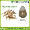 Free sample GMP factory hot sale high quality angelica extract ligustulide 1%